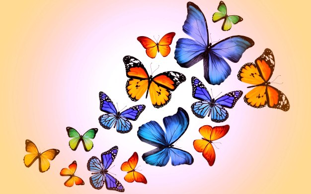 butterflies-flight-wallpaper-hd